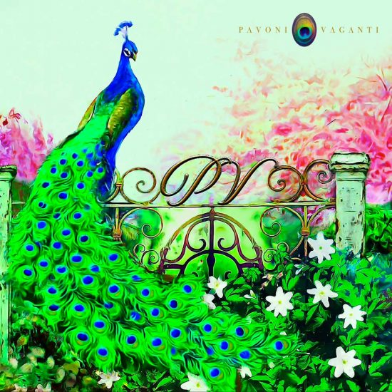carres-pavoni-vaganti-ever-green-lux