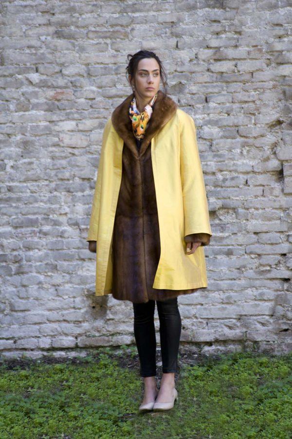 roma honey yellow i4